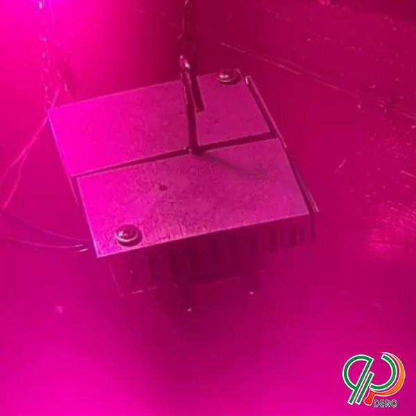 لامپ رشد گیاه فول اسپکتروم با هیت سینگ