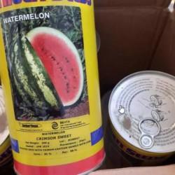 انواع بذر گوجه هیبرید وخیار وپیاز وهندوانه