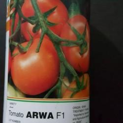 بذر گوجه فرنگی arwa f1