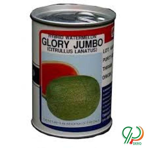 بذر هندوانه گلوری جامبو