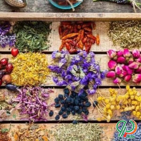 فروش انواع دانه و بذر دارویی و غیر دارویی