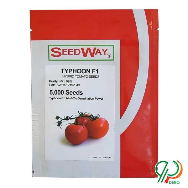فروش بذر گوجه فرنگی تایفون f1
