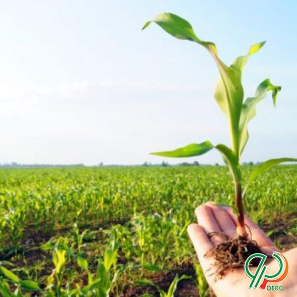 عرضه انواع کود و نهاده های کشاورزی