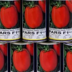 بذر گوجه پارس