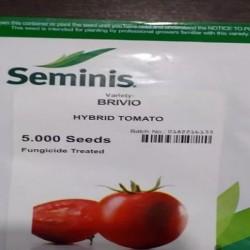 فروش بذر گوجه فرنگی بریویو