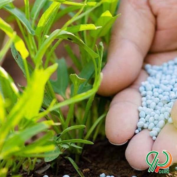 کود ریزمغذی و محلول پاشی جهت افزایش باروری و رشد