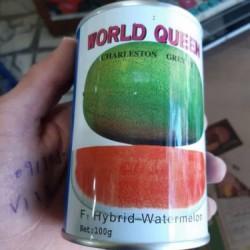 فروش بذرهندوانه وردکوئین