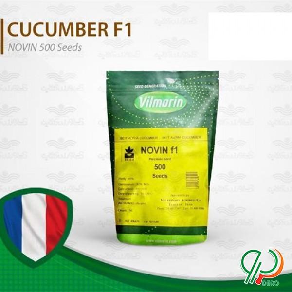 فروش بذر خیار گلخانه ای نوین مخصوص هوای سرد