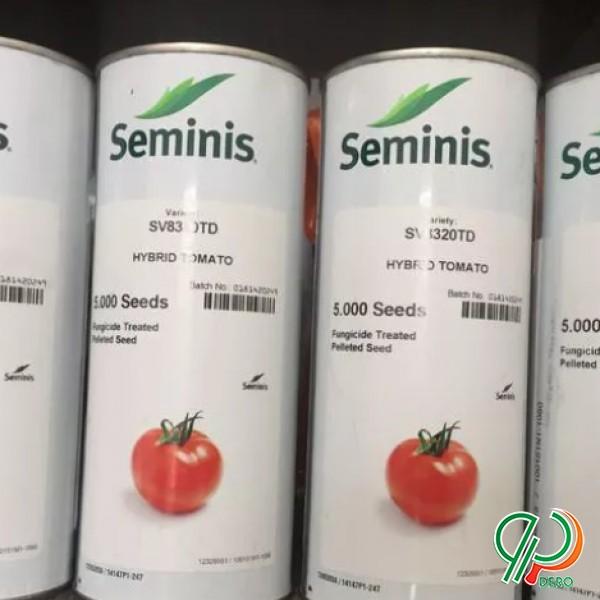 فروش انواع بذر گوجه فرنگی
