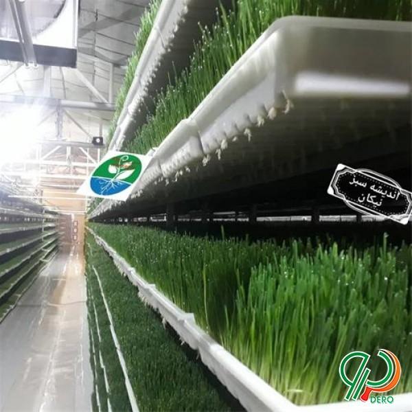 فروش تجهیزات گلخانه ای هیدروپونیک