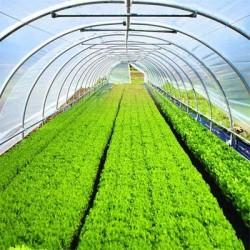 تولید کننده نایلون گلخانه و کشاورزی