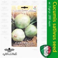 فروش بذر خیار سیبی ایتالیایی،Cucumis sativus seed