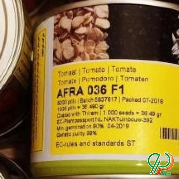 فروش انواع بذر پیاز،گوجه،خیار،فلفل و.....