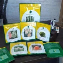 فروش بذر خربزه 1097 آمریکایی اصل