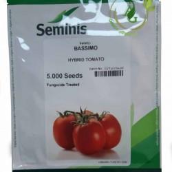 بذر گوجه پاکتی
